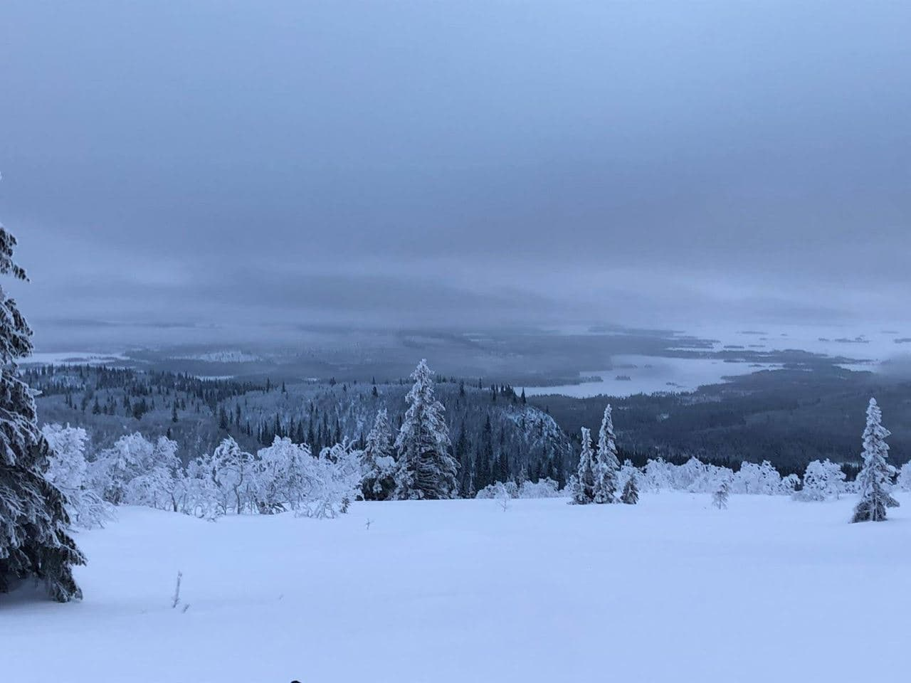 Sneeuwlandschap | Navigate North 2020