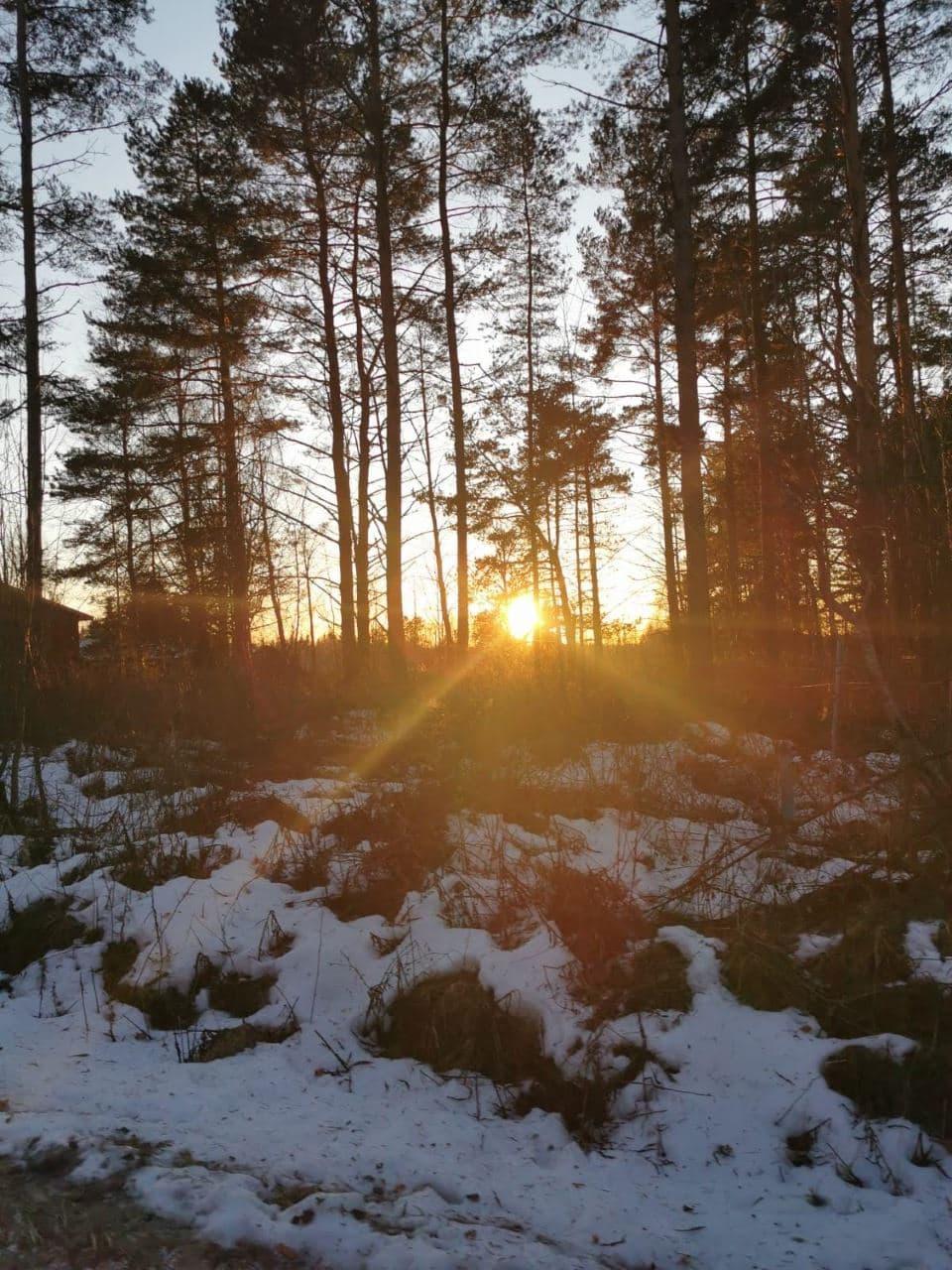 Zonnig Finland | Dag 6 | Navigate North