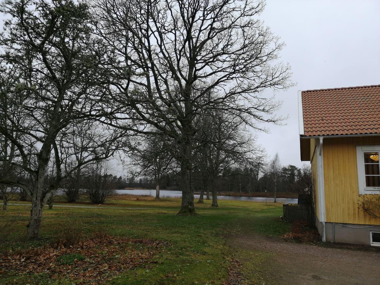 Dag 8   In Denemarken